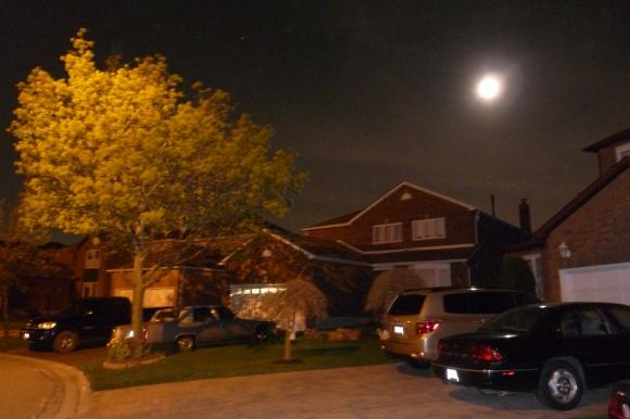 A Night Shot